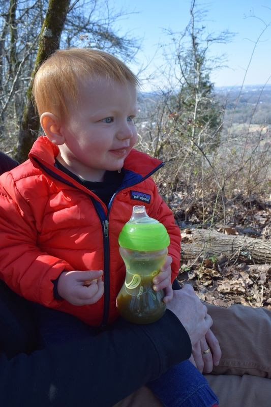 Hiking with a toddler - View from Ruffner Mountain Nature Preserve