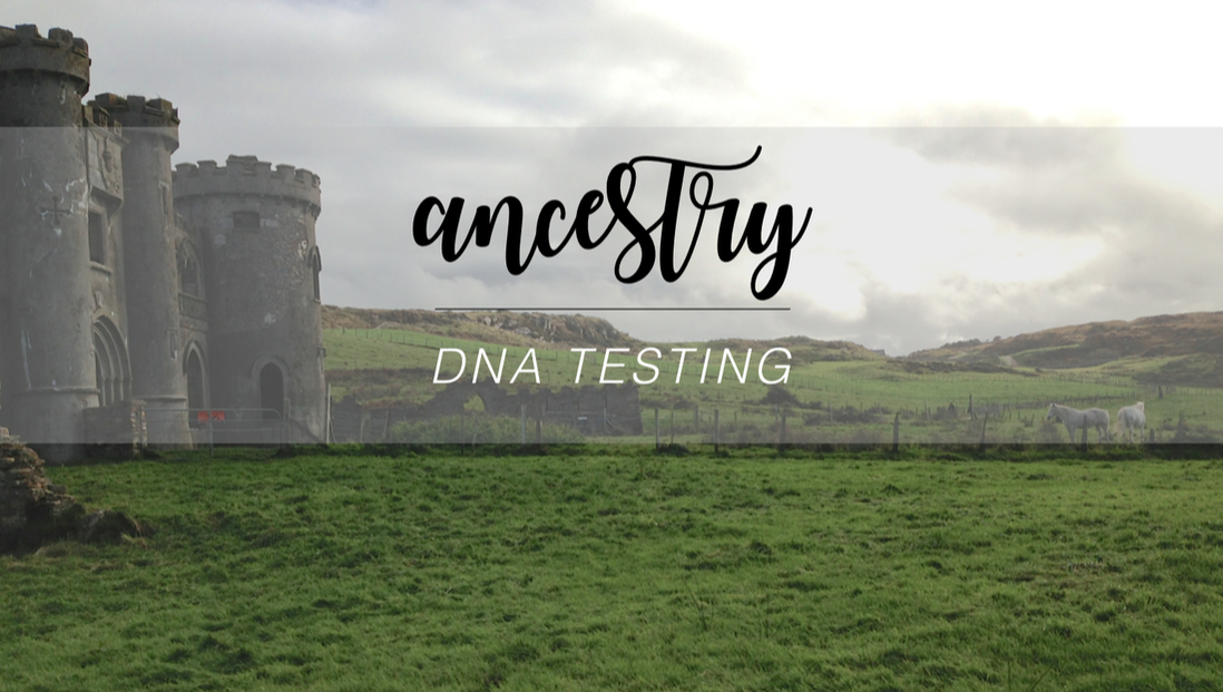 DNA Ancestry Test Results + Thoughts on the Ancestry.com testing