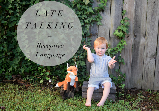 5 Thoughts on Receptive Language for Parents with Late-Talking Toddlers